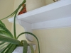 Lav en gammeldags hylde til væggen - Bagstykke og hyldeknægt har fået en profil med fræseren