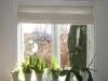 Gallerihylde over vores vinduer