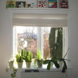 Hylde over vinduet, The Hylde of Fame