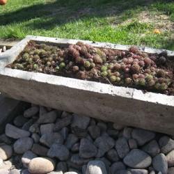 Færdigt arbejde - endnu et blomstertrug til planterne i haven