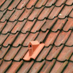 Fuglehus indbygget i taget, det er god stil