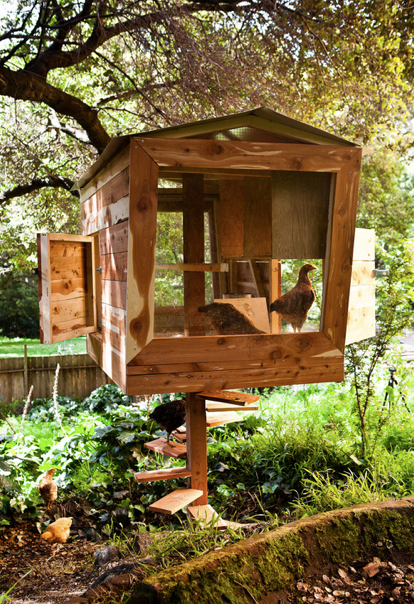 G r det selv til hus have og k kken h ns i haven for Fancy chicken coops for sale